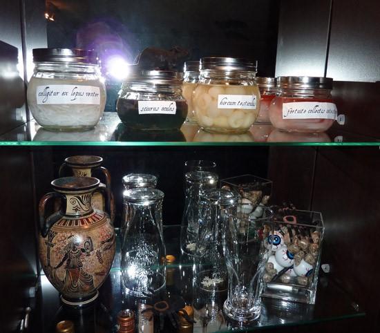 Fake Lab Specimen Jars